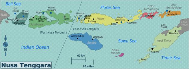 Jasa pengiriman ekspedisi cargo di Jakarta ke Sumbawa, Lombok, Bima, Sumba Timur, Kupang, Bajawa, Maumere dan Larantuka serta wilayah lainnya di NTT.