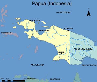 Jasa Ekspedisi Murah Di Jakarta Ke Jayapura